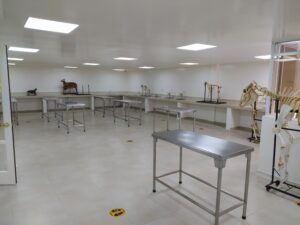 CLINICA veterinaria ADU constructores (4)